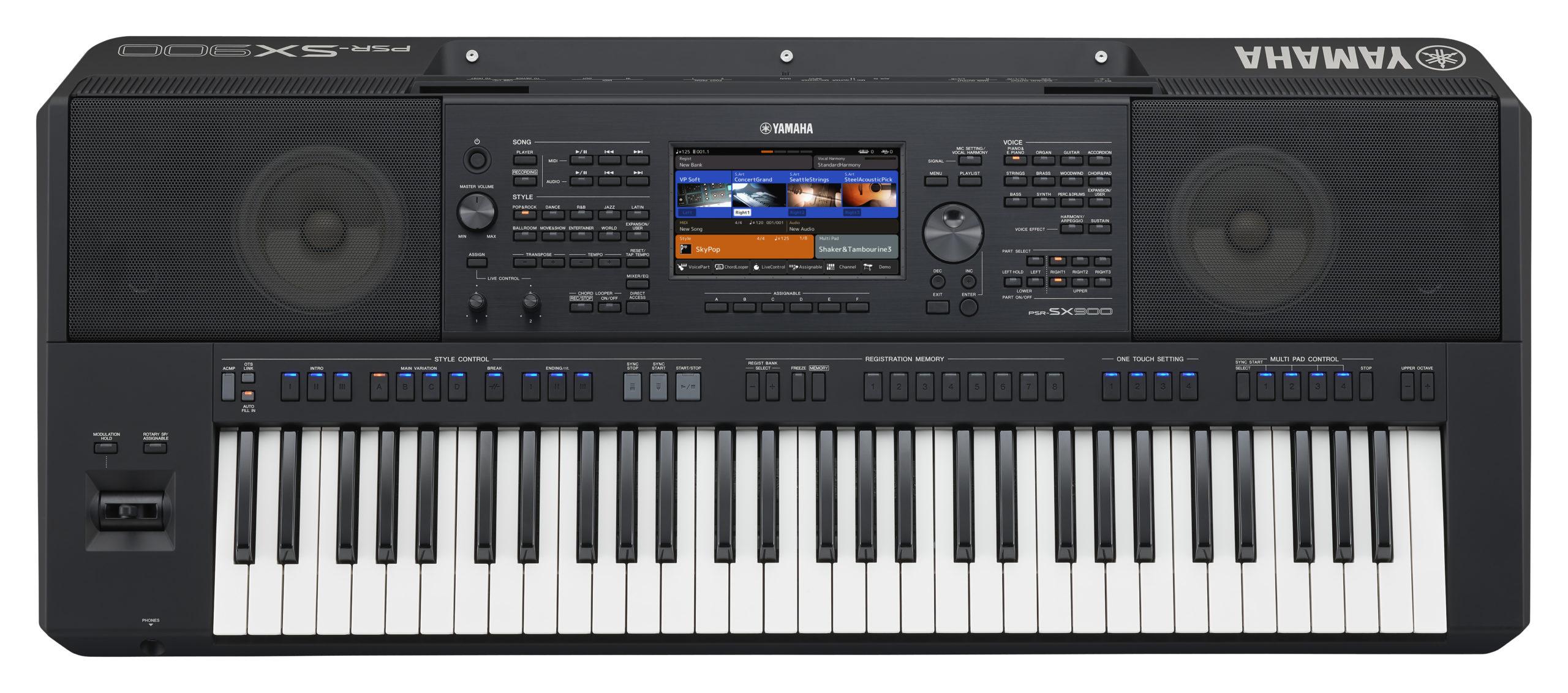 PSR-SX900_o_0001
