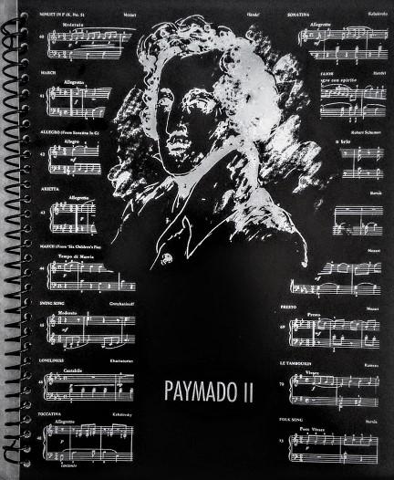 PAYMADO 2 (2)