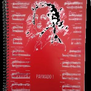 Cuaderno Pentagramado y Cuadriculado Paymado 1