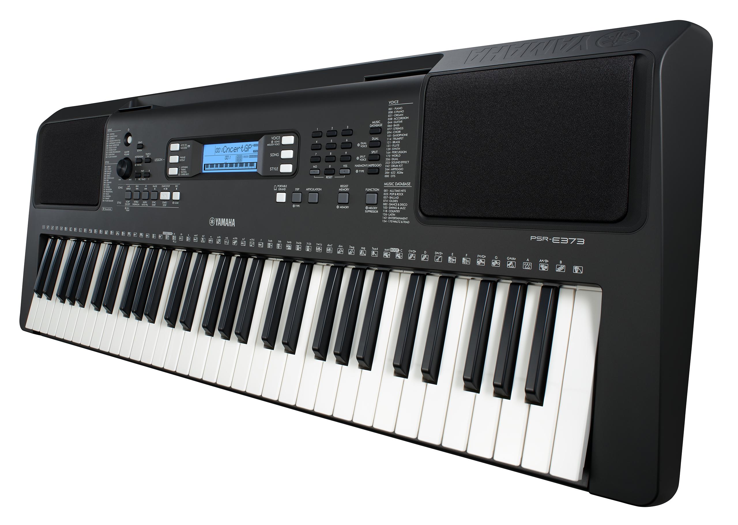 PSR-E373-z-0001_2560